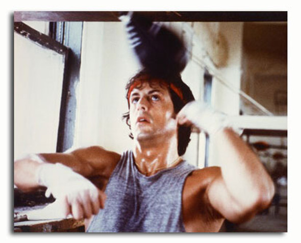 (SS3223129) Sylvester Stallone  Rocky Movie Photo