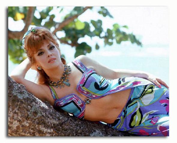 (SS3227016) Gina Lollobrigida Movie Photo