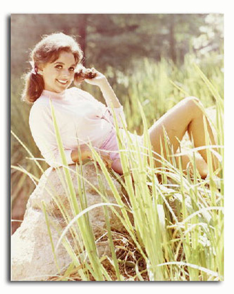(SS3232333) Dawn Wells  Gilligan's Island Movie Photo