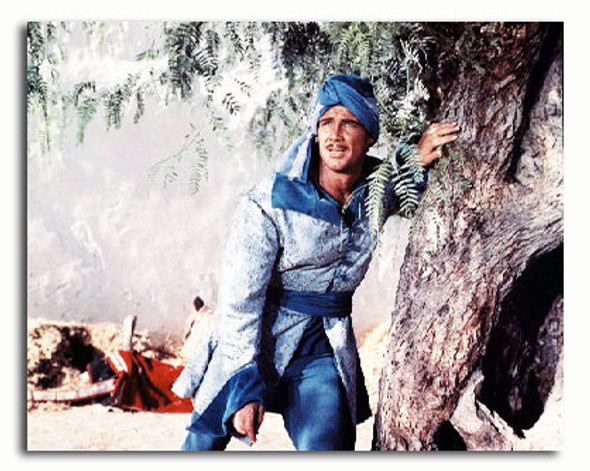 (SS3290612) Steve Reeves Movie Photo