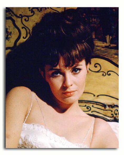 (SS3331562) Jean Seberg Movie Photo