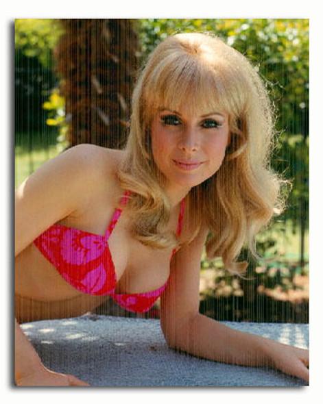 (SS3336762) Barbara Eden Movie Photo