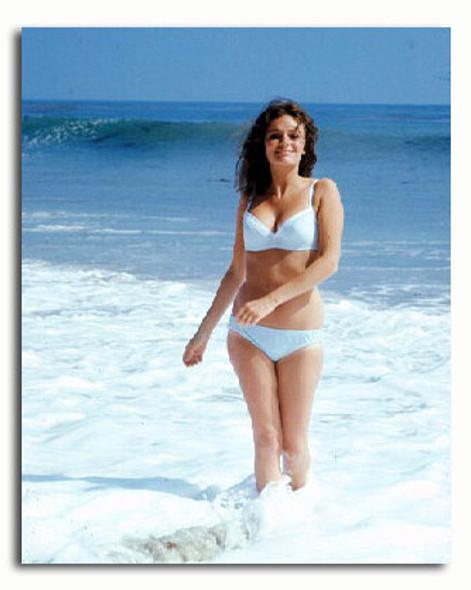 (SS3340649) Jacqueline Bisset Movie Photo