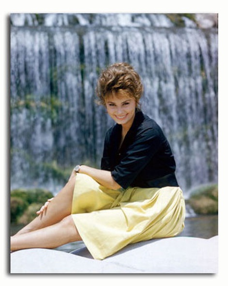 (SS3368001) Sophia Loren Movie Photo