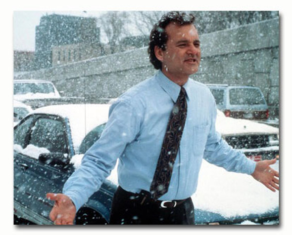 (SS3368352) Bill Murray Movie Photo