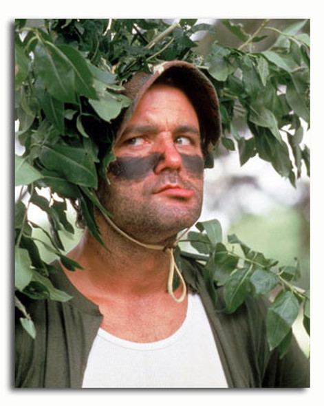 (SS3374033) Bill Murray Movie Photo