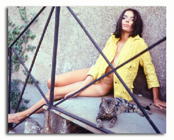 (SS3375593) Barbara Steele Movie Photo