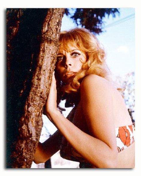 (SS3376464) Monica Vitti Movie Photo