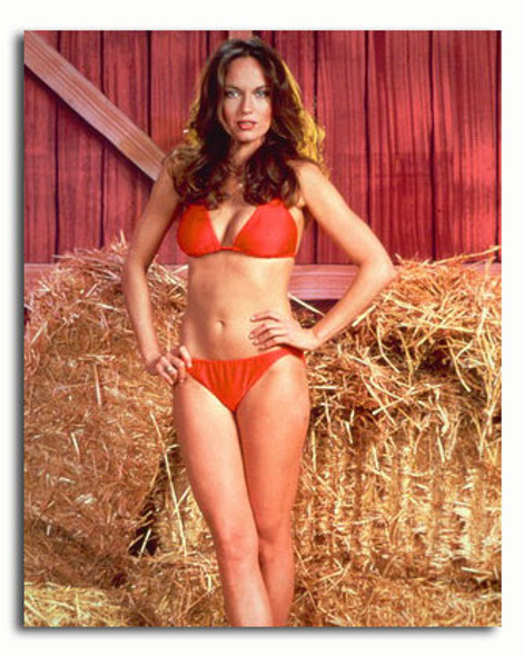 (SS3431467) Catherine Bach  The Dukes of Hazzard Movie Photo