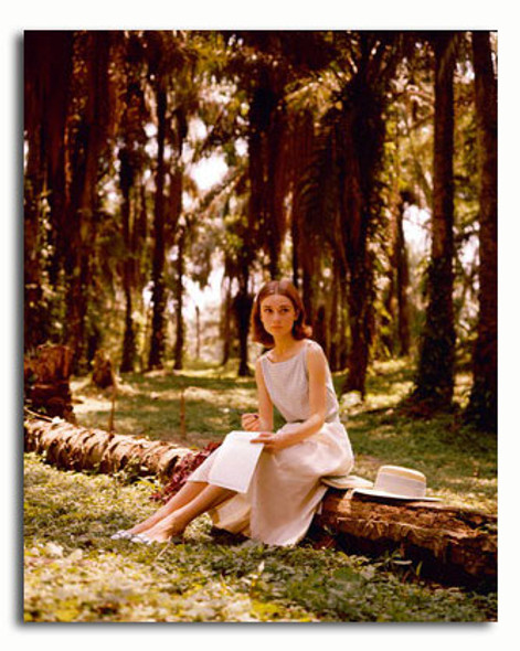 (SS3432468) Audrey Hepburn Movie Photo