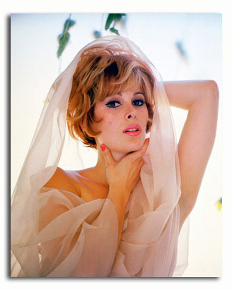 (SS3454542) Jill St. John Movie Photo
