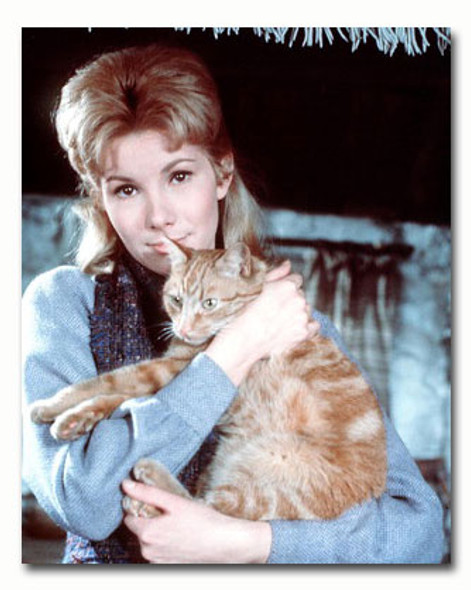 (SS3462862) Susan Hampshire Movie Photo
