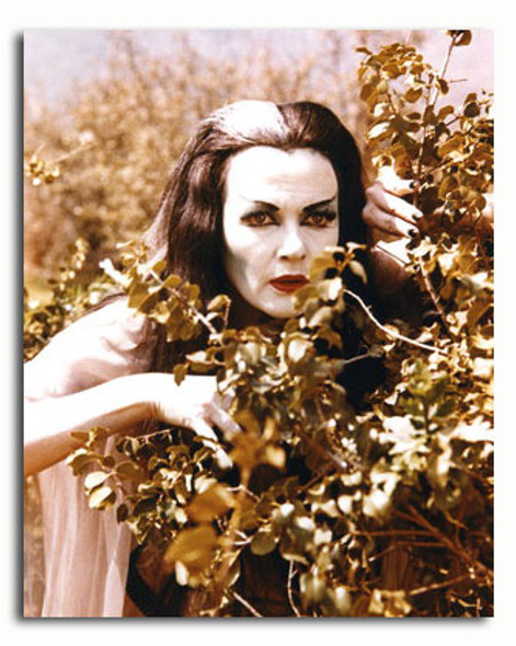 (SS3464006) Yvonne De Carlo  The Munsters Movie Photo