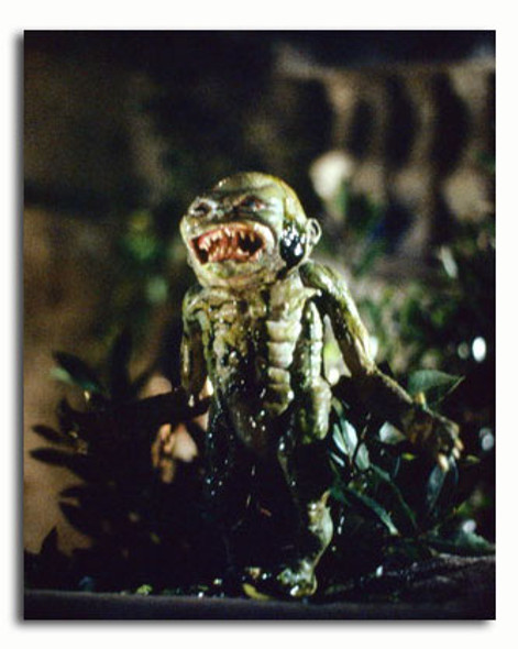 (SS3470272)  Ghoulies Movie Photo