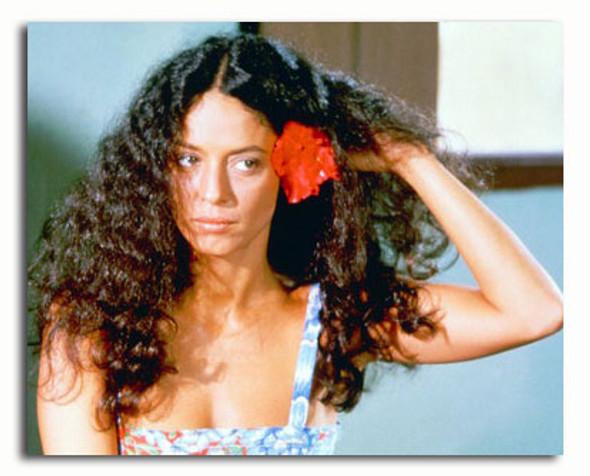 (SS3474185) Sonia Braga Movie Photo