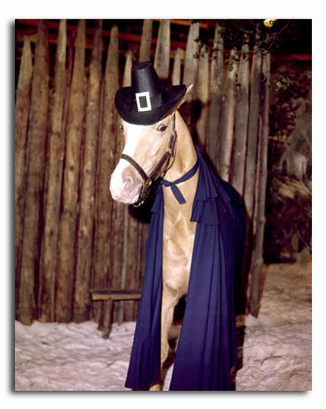 (SS3476902) Mr. Ed Movie Photo
