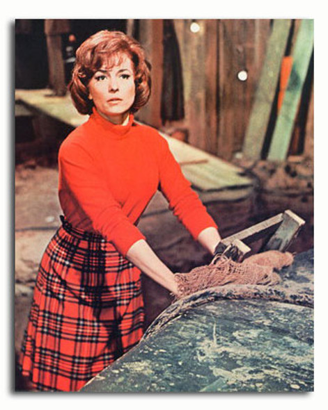 (SS3477747) Barbara Shelley Movie Photo
