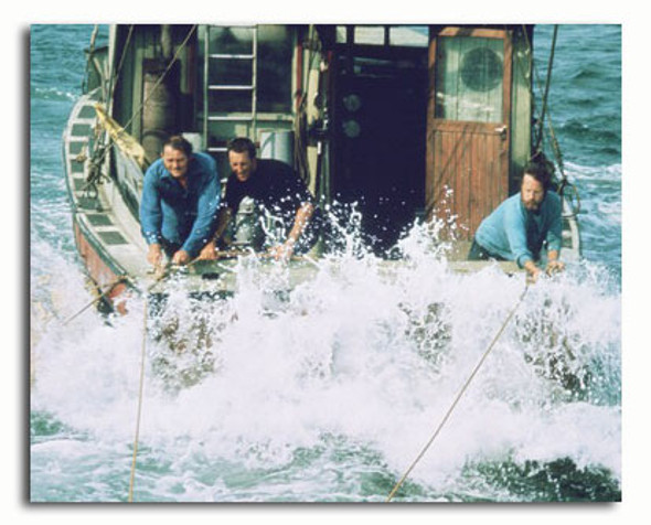 (SS3498599) Cast   Jaws Movie Photo