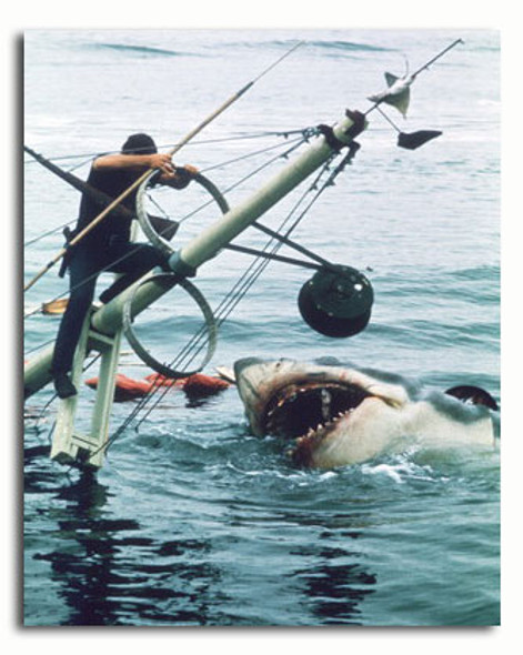 (SS3498690)  Jaws Movie Photo