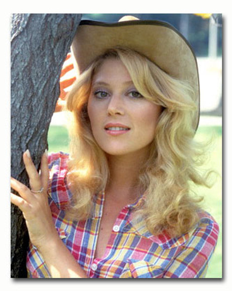(SS3559231) Audrey Landers Movie Photo