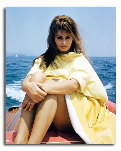 (SS3567096) Sophia Loren Movie Photo