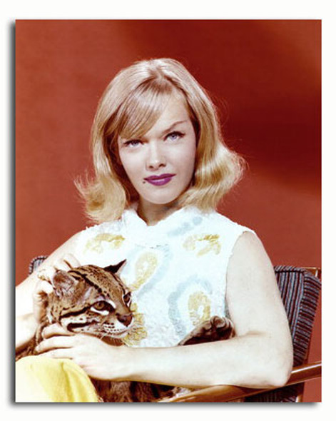 (SS3583086) Anne Francis Movie Photo