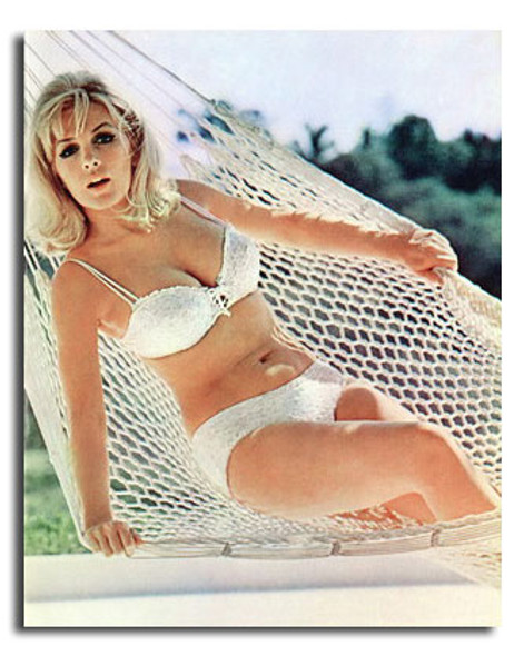 (SS3603808) Stella Stevens Movie Photo