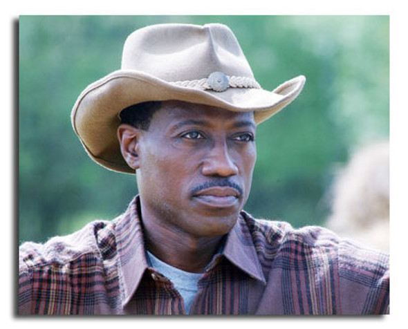 (SS3611985) Wesley Snipes Movie Photo