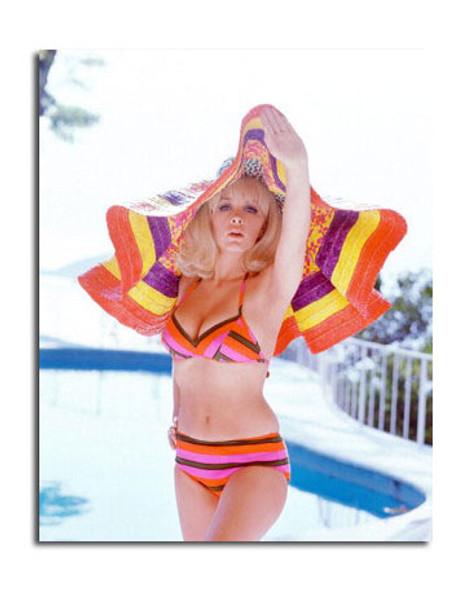 Stella Stevens Movie Photo (SS3615300)