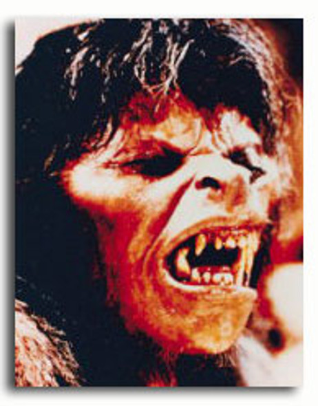 (SS2786732)  An American Werewolf in London Movie Photo