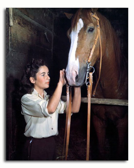 (SS2936921) Elizabeth Taylor  National Velvet Movie Photo