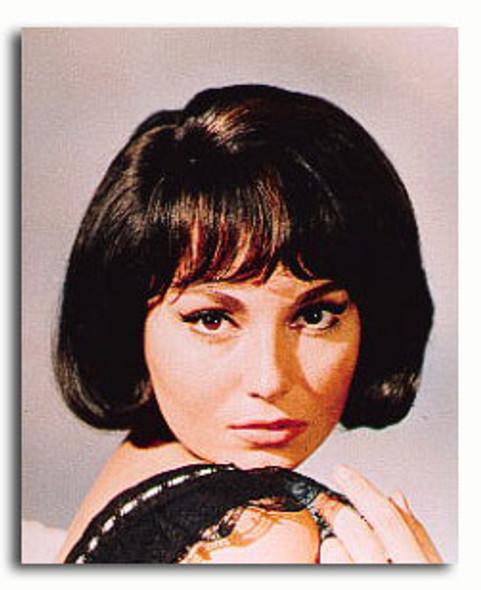 (SS3169361) Rosanna Schiaffino Movie Photo