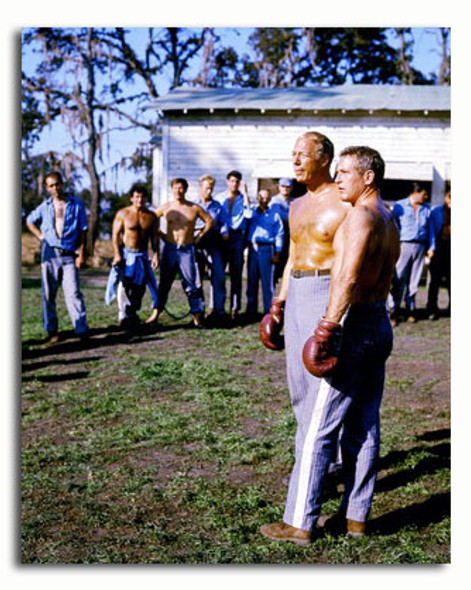 (SS3561766) Cast   Cool Hand Luke Movie Photo