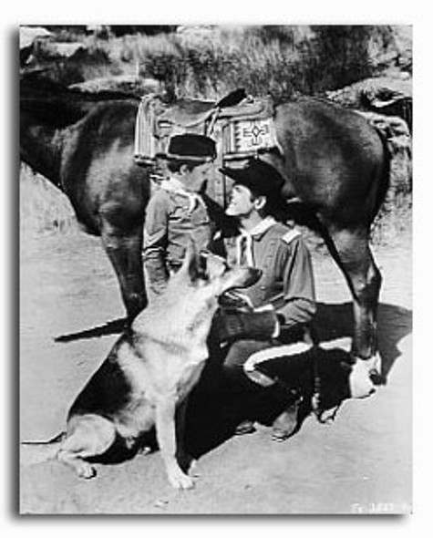 (SS2224352)  The Adventures of Rin Tin Tin Television Photo