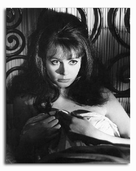 (SS2233400) Sarah Miles  The Servant Movie Photo