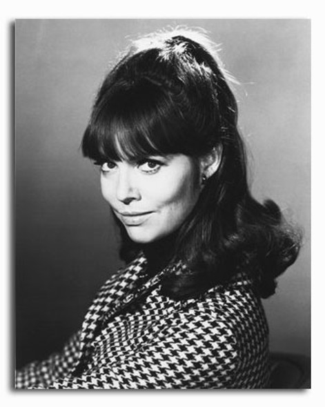 (SS2321839) Barbara Feldon  Get Smart Movie Photo