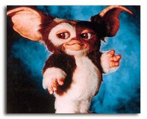 (SS2971709)  Gremlins Movie Photo