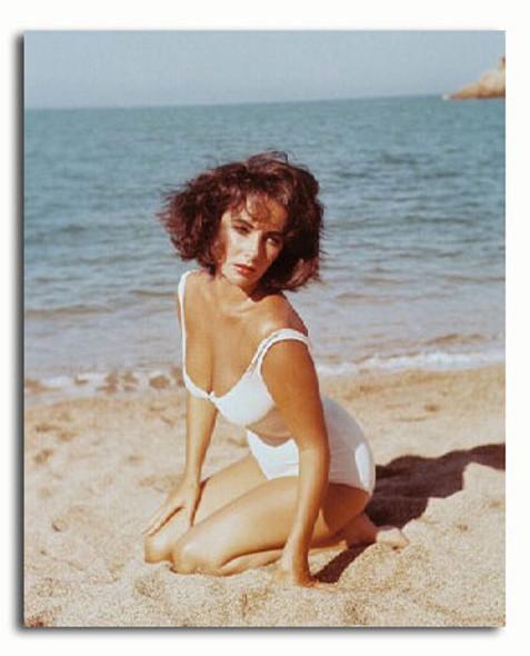 (SS3144531) Elizabeth Taylor  Suddenly, Last Summer Movie Photo