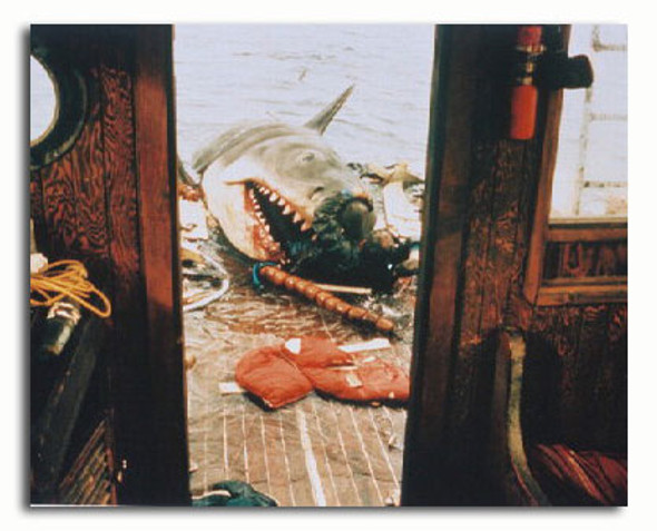 (SS3168009)  Jaws Movie Photo
