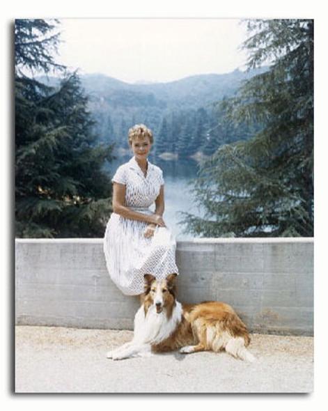 (SS3293108) June Lockhart  Lassie Movie Photo