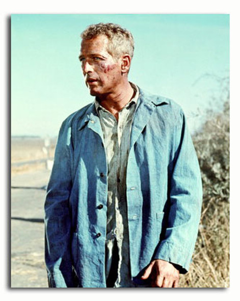 (SS3558308) Paul Newman Movie Photo