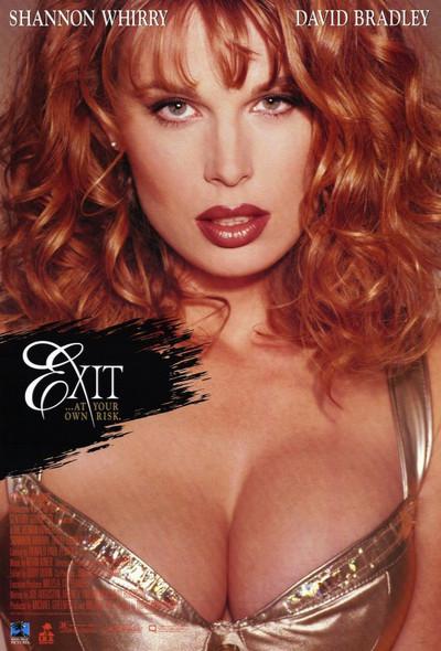 EXIT (Video) ORIGINAL VIDEO/DVD AD POSTER