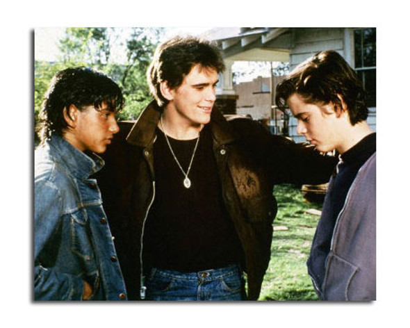 The Outsiders Movie Photo (SS3619759)