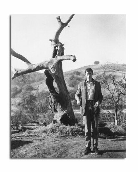 Anthony Perkins Movie Photo (SS2457650)