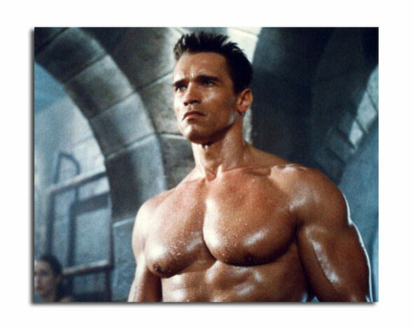 Arnold Schwarzenegger Movie Photo (SS3619863)