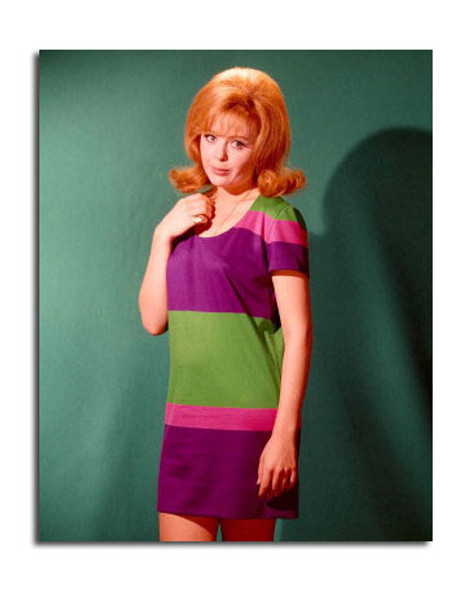 Deborah Walley Movie Photo (SS3647488)