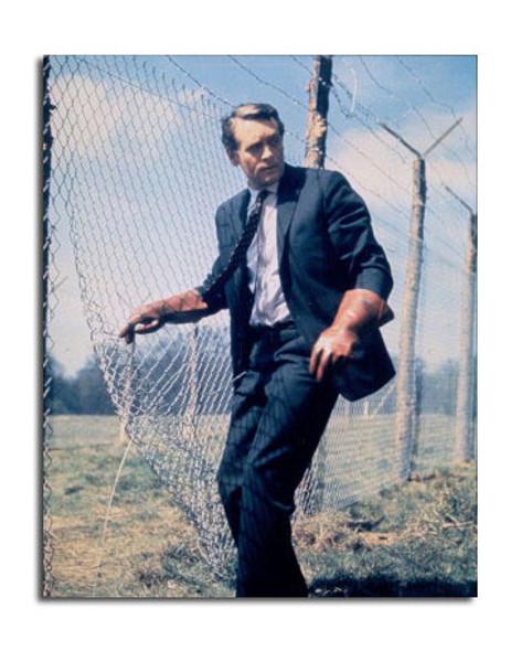 Patrick McGoohan Movie Photo (SS3643146)