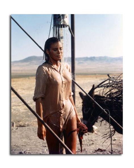 Raquel Welch Movie Photo (SS3620019)