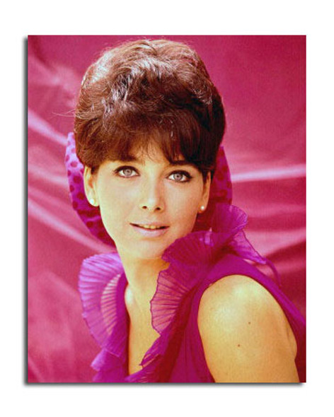 Suzanne Pleshette Movie Photo (SS3648671)