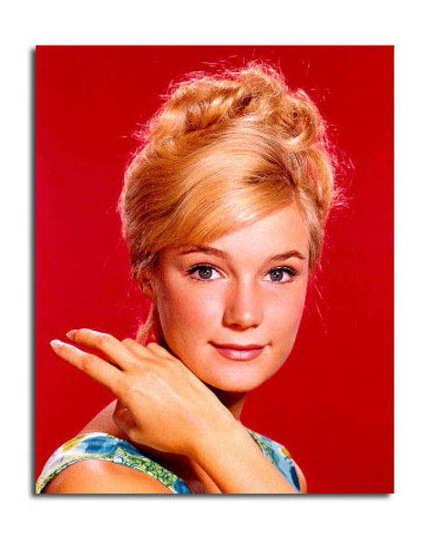 Yvette Mimieux Movie Photo (SS3648528)